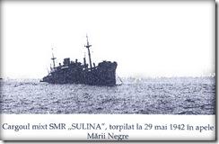 sylina_2